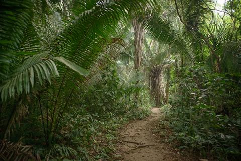 trail-01